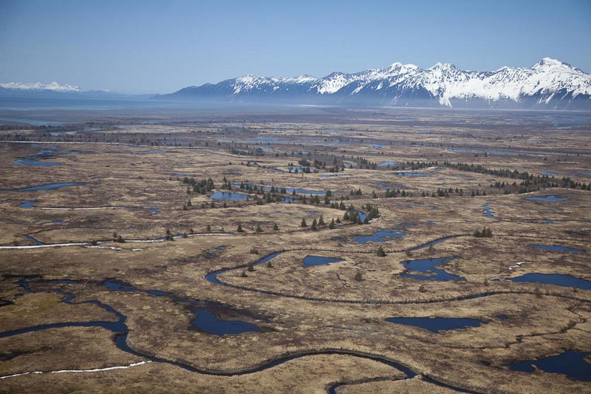 Alaska's Arctic Tour   Hugh Rose Photography