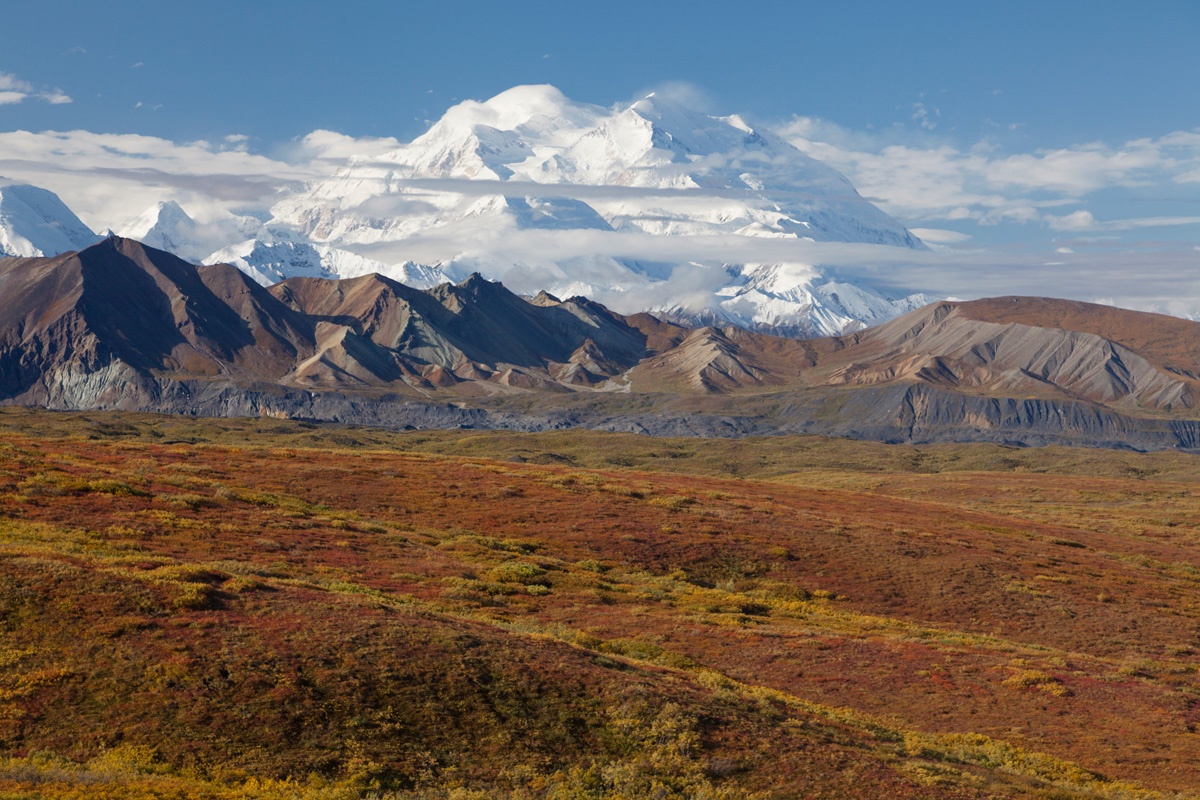 Alaska Denali Photo Tour