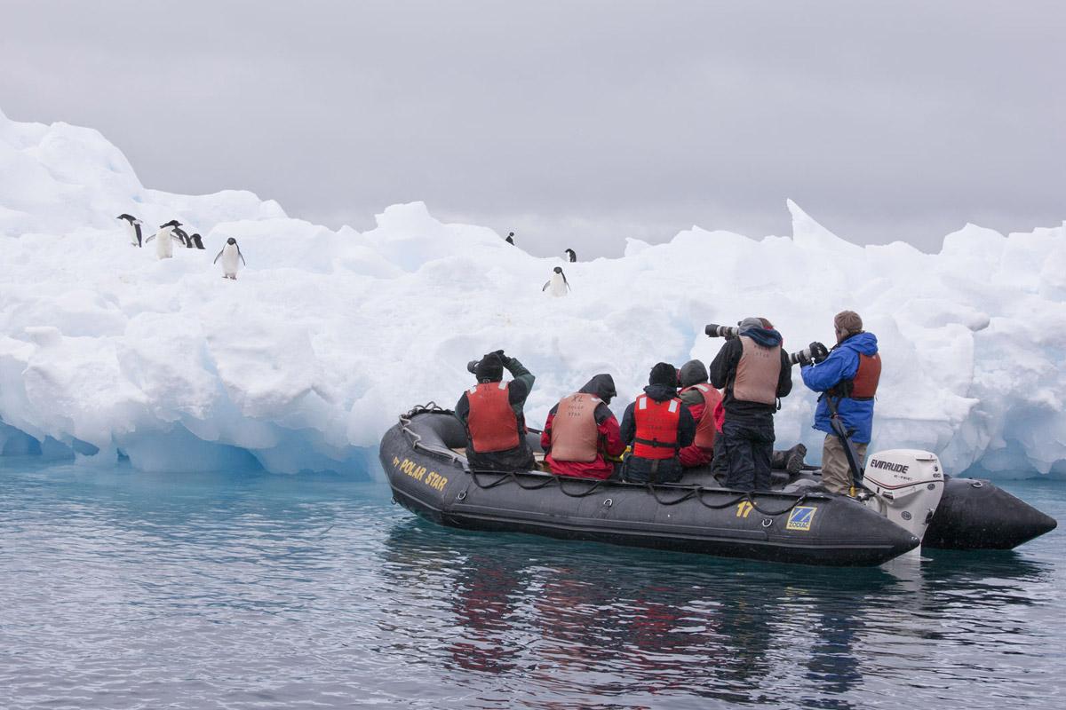 Falkland Island Circuit Photography Tours