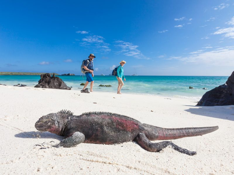 Galapagos Islands Photography Tour
