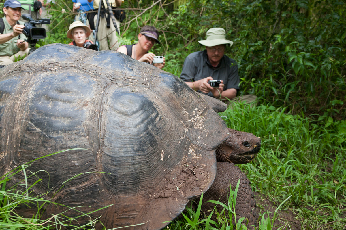 Galapagos Islands Photography Tours