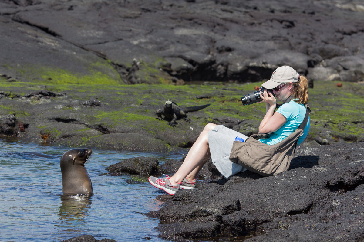 Galapagos Wildlife Tour