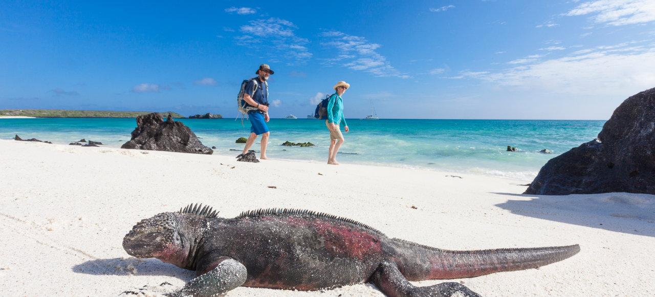 enchanted galapagos islands hugh rose photography