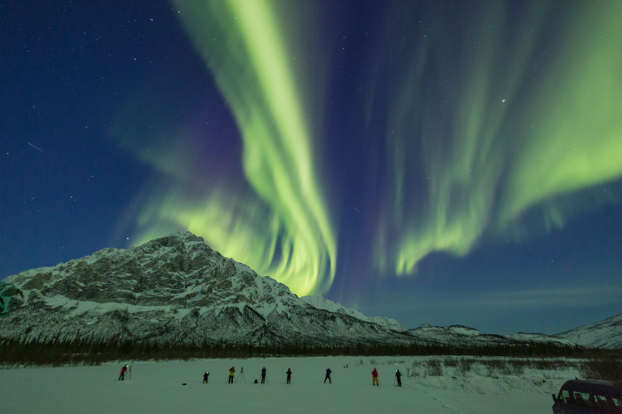 Aurora and Arctic Wildlife in Early Winter