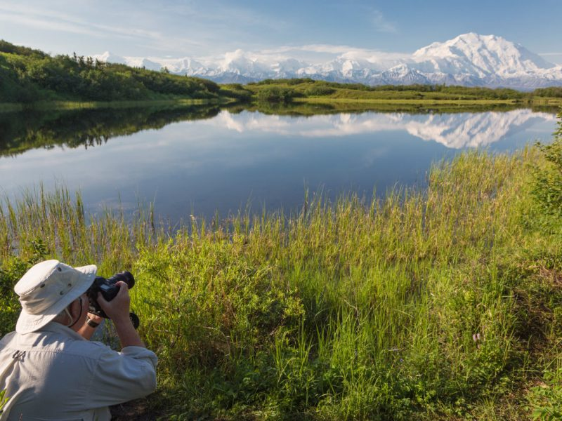Denali Photo Tours
